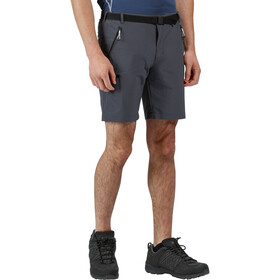 Regatta Xert III Stretch Shorts Hombre, seal grey